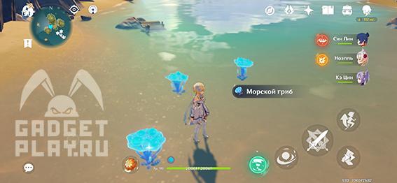 morskoj-grib-v-genshin-impact-3