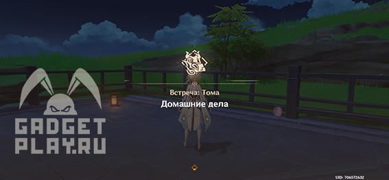 domashniche-dela-v-genshin-impact-01