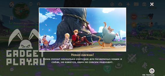 domashniche-dela-v-genshin-impact-21